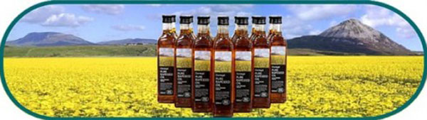 Donegal Rapeseed Oil